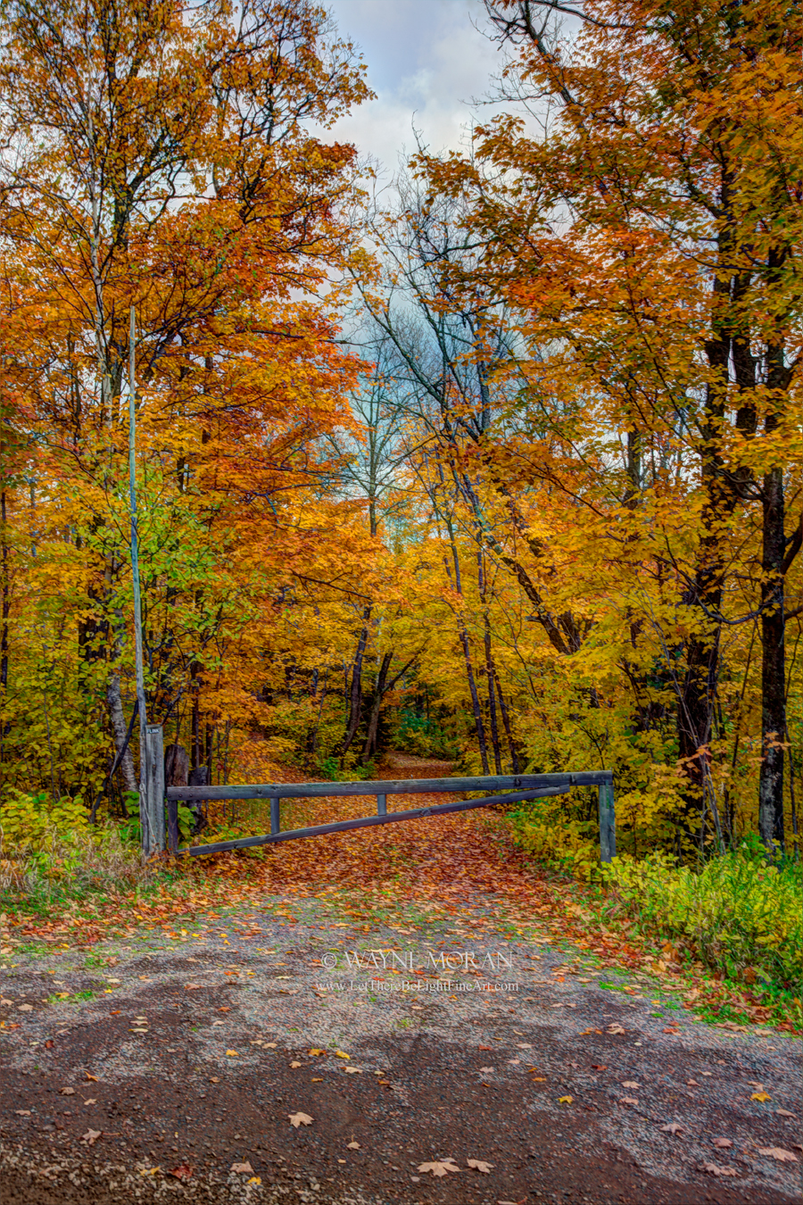 Autumn Photography on the North Shore of Lake Superior Minnesota