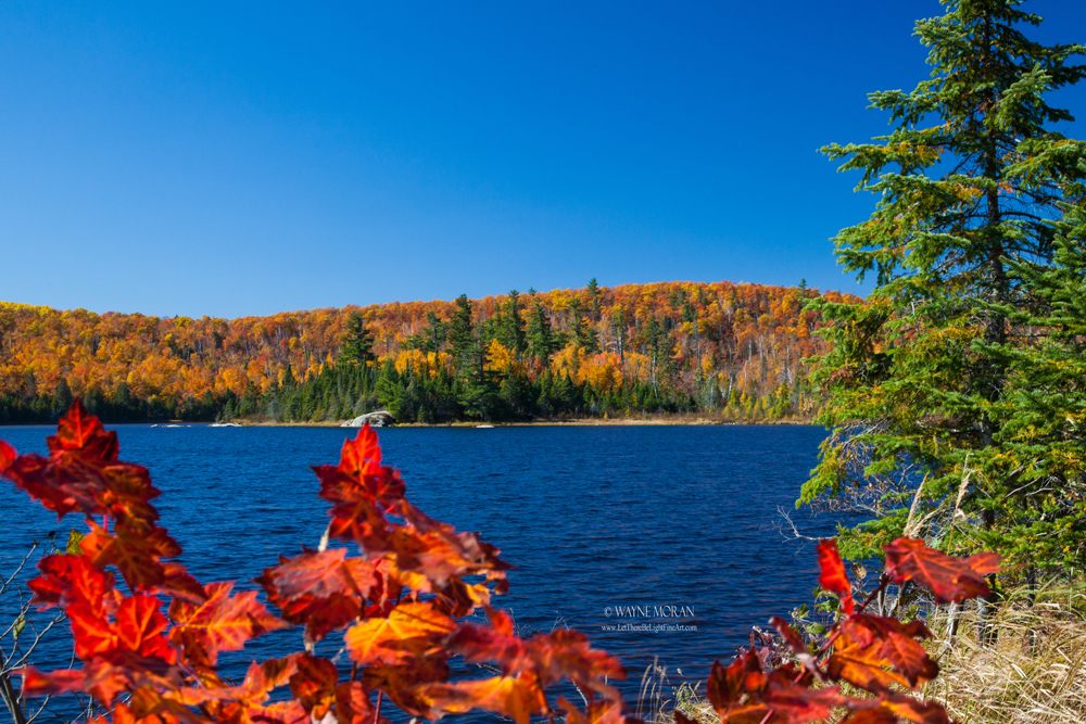 View of Tettegouche Lake tettegouche state park Autumn Photography on the North Shore of Lake Superior Minnesota