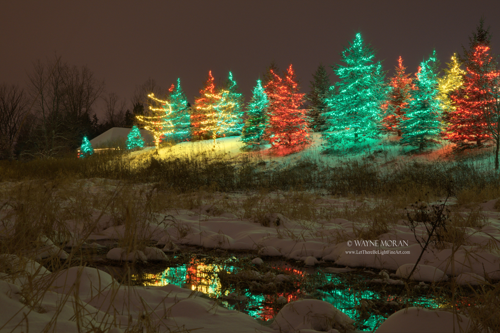 Best Twin Cities Christmas Lights Saint Paul Let There
